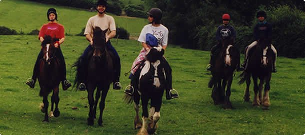 pony trekking activity